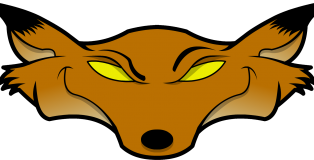 fox_head_color_2001x919